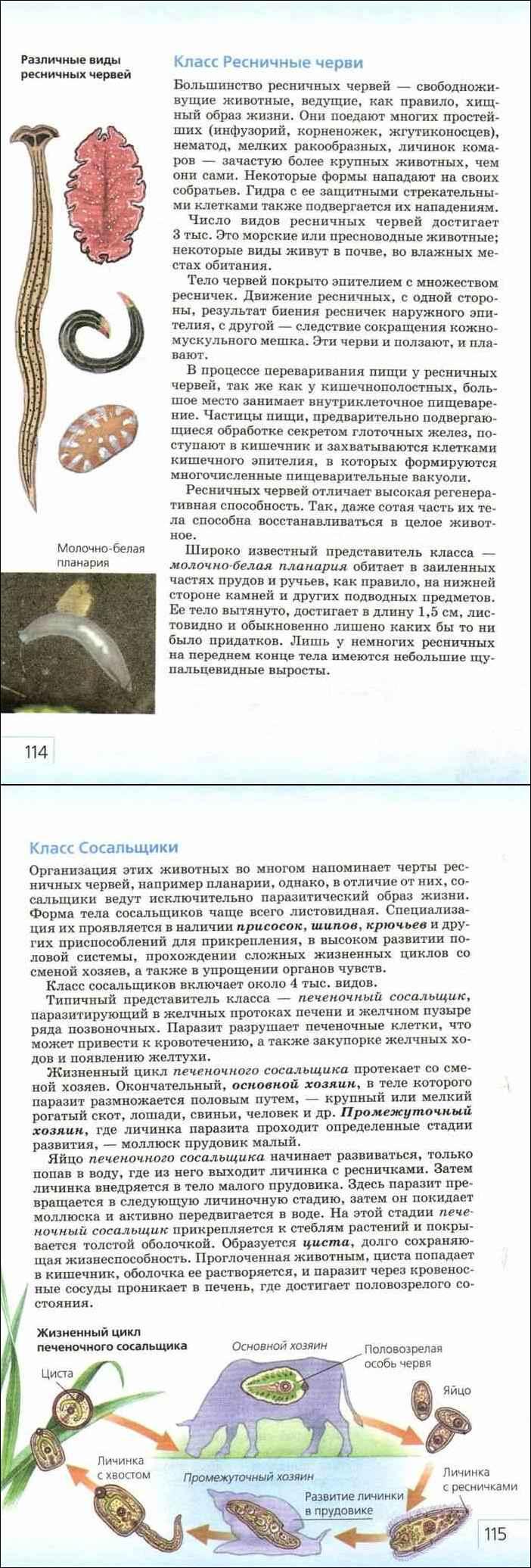 Учебник биология 7 класс захаров сонин читать онлайн бесплатно.